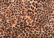 Cowhide Clutch Purse Mini Leopard - Minnie