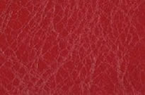 Leather Cosmetics Pouch Red - Yves
